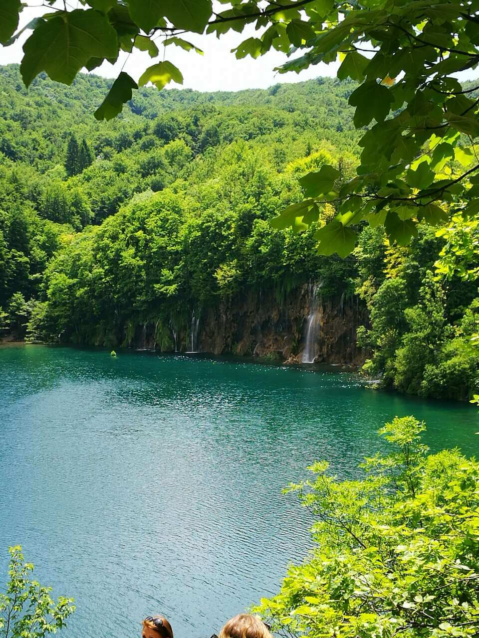 View of green trees and a lake at Plitvice Lakes national park