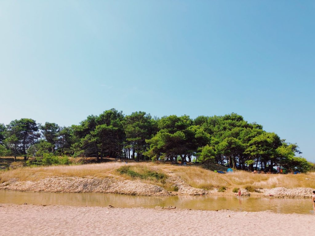 Blue sky, green trees and a sandy beach