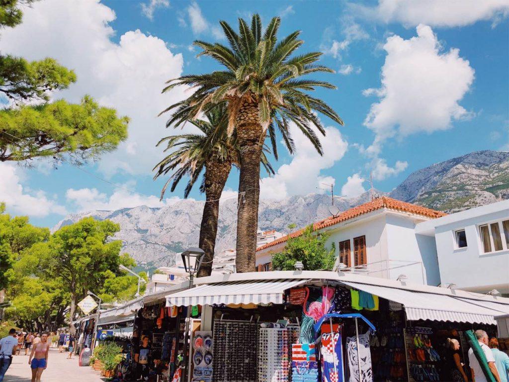 Palm trees, mountains and blue sky in Makarska, Croatia