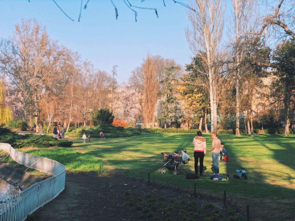 Danube park in Novi Sad